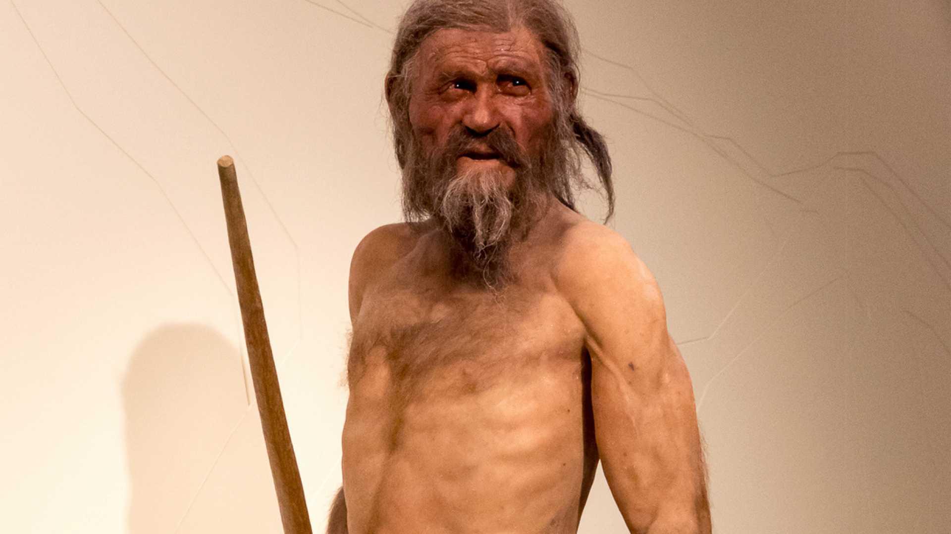 Az ősember CLA-ban gazdag ételeket fogyasztott <br>Őseinknek könnyű volt megőrizni a hatékony zsírégetés miatt szálkás testüket